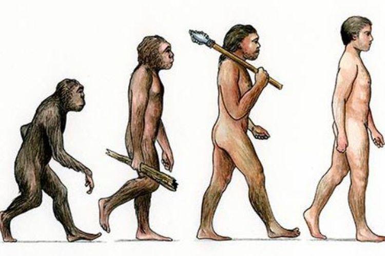 Berbagai Teori Evolusi Manusia Dan Bantahan Dari Ilmu Pengetahuan