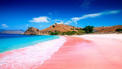Pantai ini mendapat julukan pink beach karena memang pantai ini memiliki pasir yang berwarna pink. Wisata Labuan Bajo Pink Beach ini sudah terkenal bahkan sampai ke luar negeri.